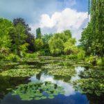 Visite du jardin de Monet