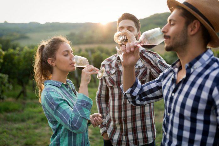 degustation-vin-jeune