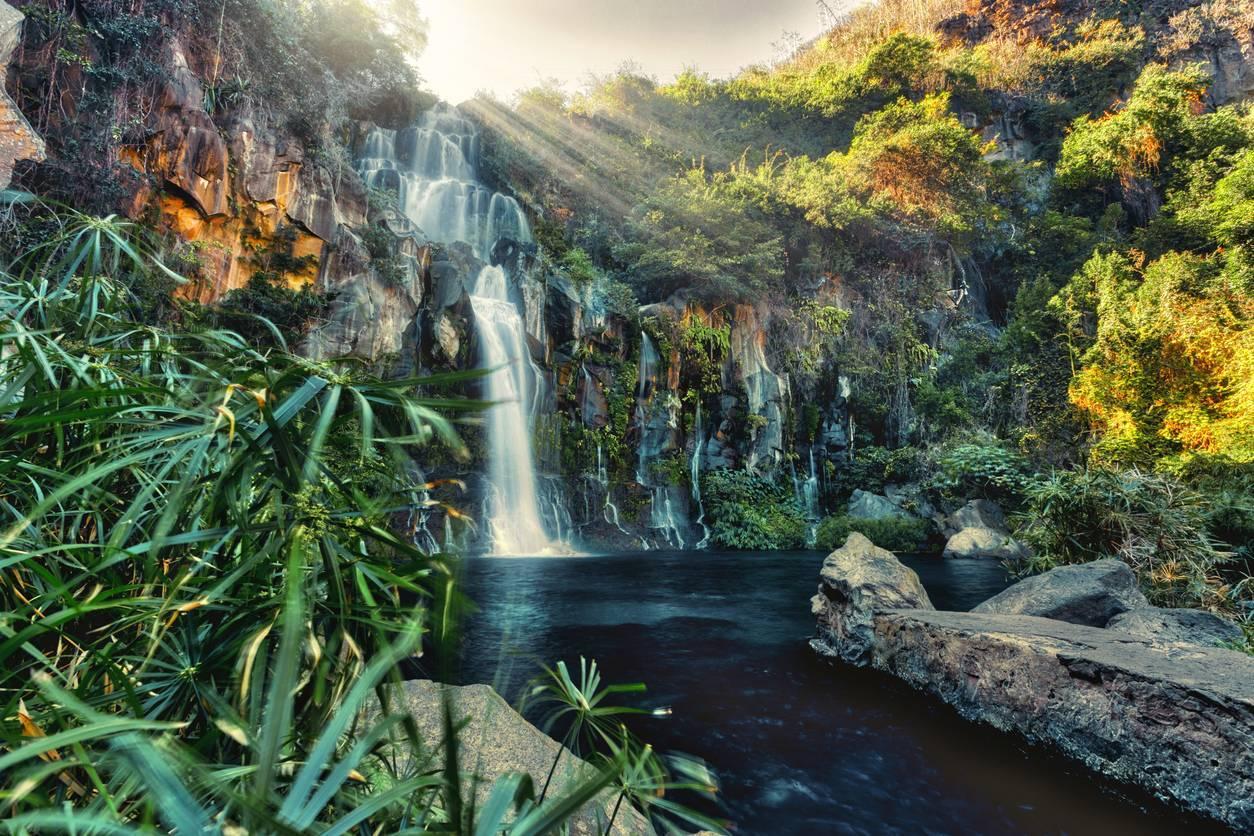 Options de déménagement à La Réunion